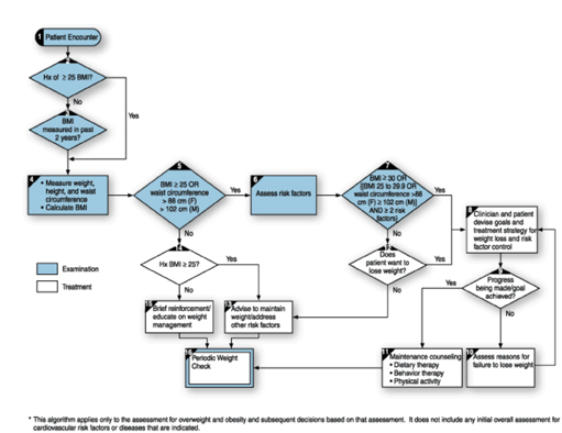 Assessment_and_treatment_algorithm_for_overweight_and_obesity