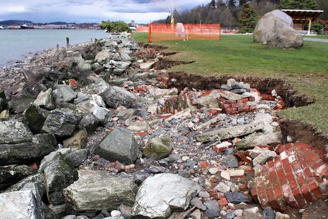 Armoring with fill of concrete slabs and old bricks does not prevent erosion — Boulevard Park, Bellingham. This spot also has some toxic substances in it but it will be cleaned up, regraded and de-armored. photo: by Ron Kleinknecht